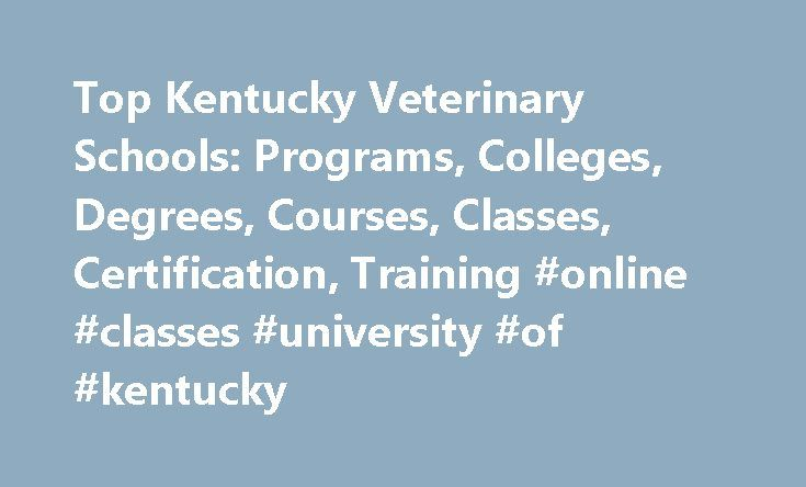 Top Kentucky Veterinary Schools: Programs, Colleges, Degrees, Courses, Classes, Certification, Training #online #classes #university #of #kentucky http://tennessee.remmont.com/top-kentucky-veterinary-schools-programs-colleges-degrees-courses-classes-certification-training-online-classes-university-of-kentucky/  # Veterinary Schools in Kentucky Kentucky contains three schools that offer veterinary programs. Murray State University. the highest-ranking veterinary school in KY, has a total…