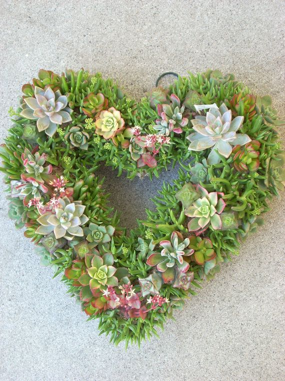 Succulent Heart Wreath 15 inch diameter by SucculentSalon on Etsy