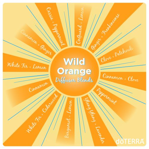 Wild Orange diffuses well with a lot of different essential oils! Try some today!