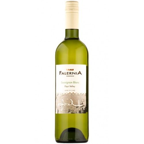 Falernia Sauvignon Blanc