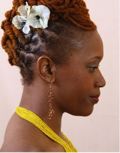 Loc Updo Natural Hair Accessories At Dreadstop Com