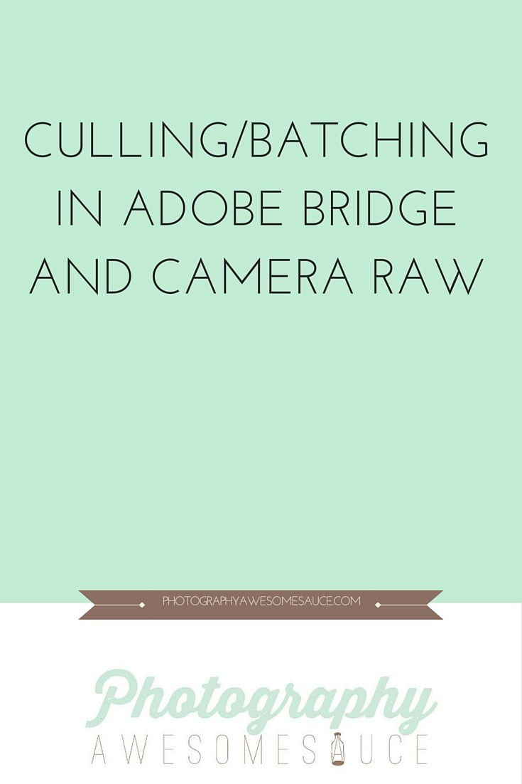 Hey Everyone!This is a little video tutorial of how to use Adobe Bridge and Adobe Camera Raw. It will also show you how to batch edit your images in Adobe Camera raw for a quicker workflow process. I know there are…