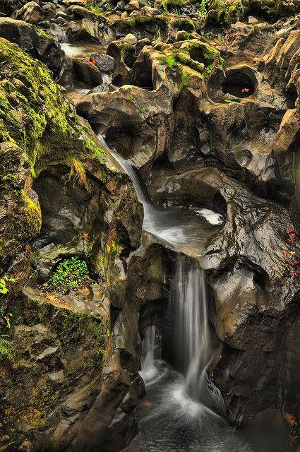 Tumwater Falls, Olympia, Washington   Flickr - Photo Sharing!