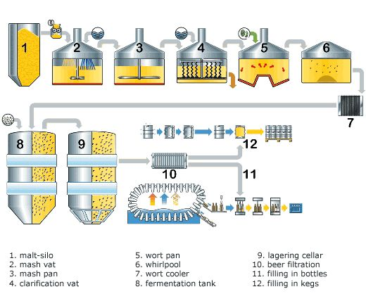 74 Best How Beer Is Made Images On Pinterest Craft Beer