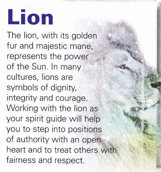 Your Animal Spirit Guide for April 16th is The Lion | Witches Of The Craft®