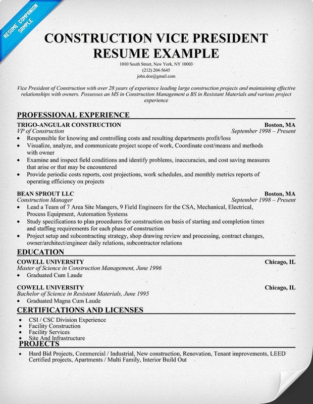 construction vice president resume example