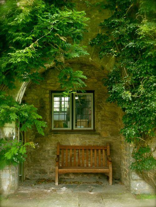 Peaceful Bench   5 Repins   Garden