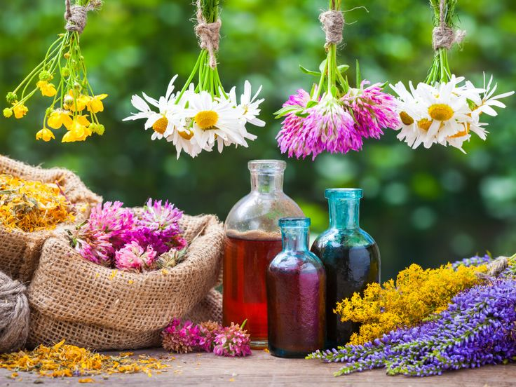 Healing Herbs puzzle in Flowers jigsaw puzzles on TheJigsawPuzzles.com. Play full screen, enjoy Puzzle of the Day and thousands more.