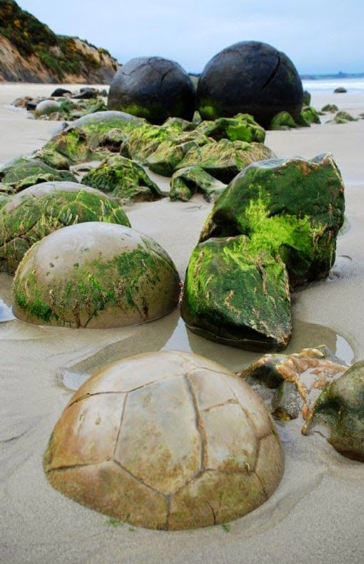 The Moeraki Boulders (Dragon Eggs) In Koekohe Beach, New Zealand - holidayspots4u