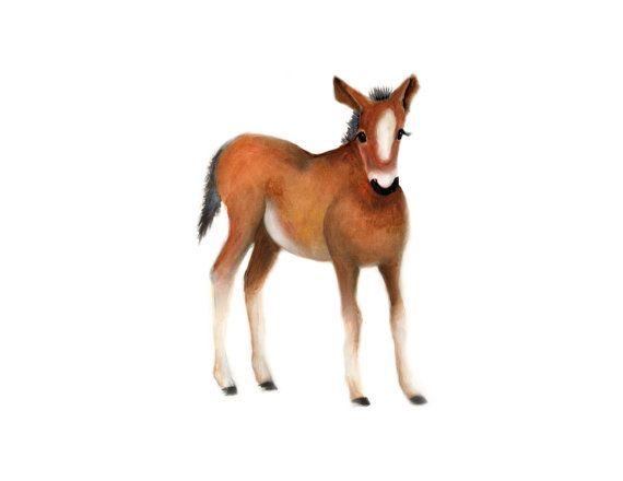 Horse Nursery Art Farm Animal Print Baby Horse by studioQgallery