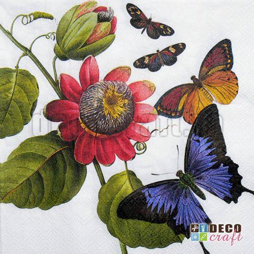 Servetele cu flori : Servetele - Flori si fluturi colorati - 33x33cm, 4 buc