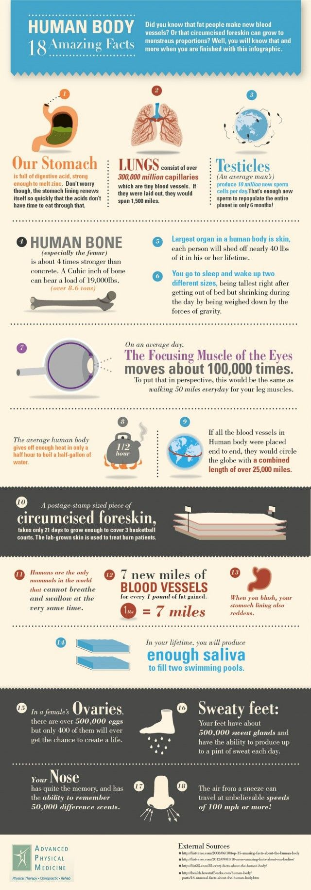 Human Body - 18 Amazing Facts #infographic