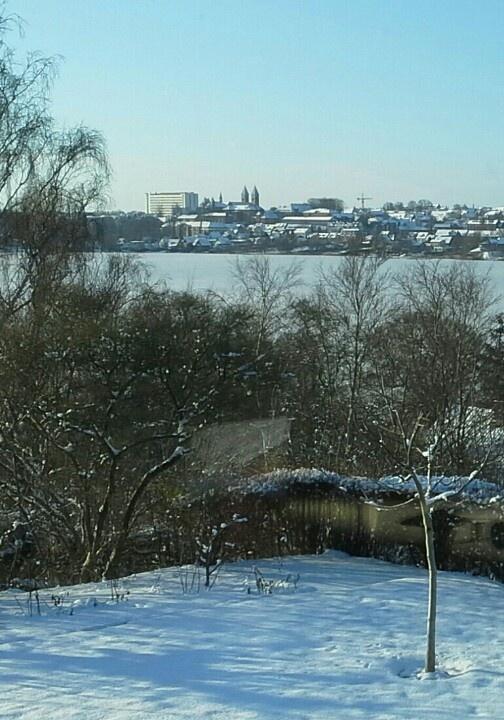 Winter view in Viborg