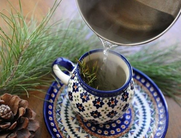 4 Powerful Tea Recipes For Treating Iron Deficiency Anemia