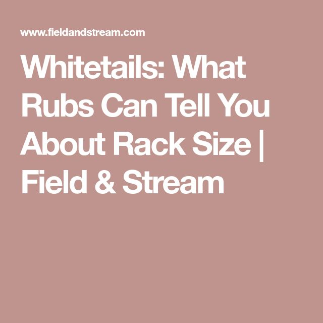 Whitetails: What Rubs Can Tell You About Rack Size | Field & Stream