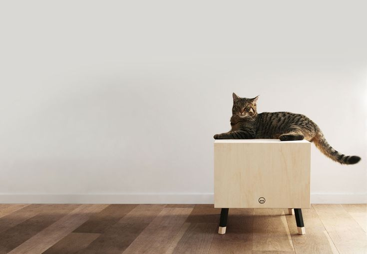 Krab launches minimalist cat houses that your cats can escape to feel safe, while also blending in with your modern decor.