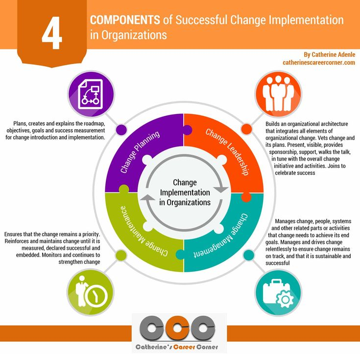 comprehensive plan to implement an organizational change Organizational change management plan a comprehensive implementing large-scale organizational.