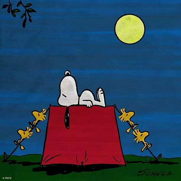 Image result for SNOOPY SLEEPING ON HOUSE, GIF