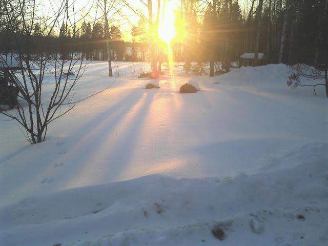 verkkokatsasus: Luonto uutiset aika talven aika aurinko paista välillä