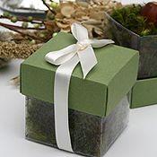 Wedding Favors - Seeds of Life - Gift Tree Nursery