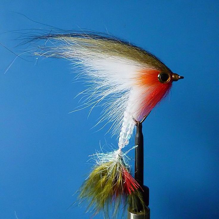 Bead tail, bass streamer