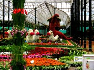 As the name itself implies, the Red Gardens or Lal Bagh Botanical Gardens, beautify the southern part of Bangalore and have a rich lineage associated with them as they were first started by Hyder Ali, ruler of Mysore and finished by his son, Tipu Sultan. The garden compound houses the largest collection of tropical plants, has an aquarium and a lake and is one of the most visited places in Bangalore