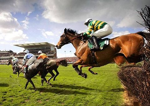 Grand National 2016 Free Bets and Odds. Get The Latest Runners and Riders List Plus Start Time and Date.  http://www.grand-national.co.uk