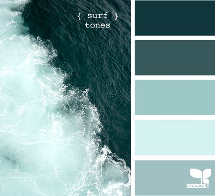 surf tones: Living Rooms, Bathroom Colors, Design Seeds, Colors Palettes, Colors Schemes, Surfing Tones, Colors Seeds, Rooms Colors, Paintings Palettes