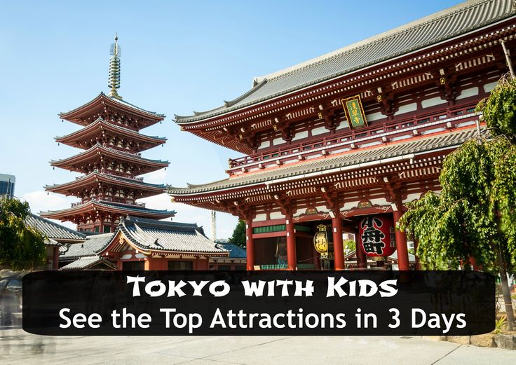 Tokyo with Kids: 3 Days, 2 Tweens, 1 Amazing Time