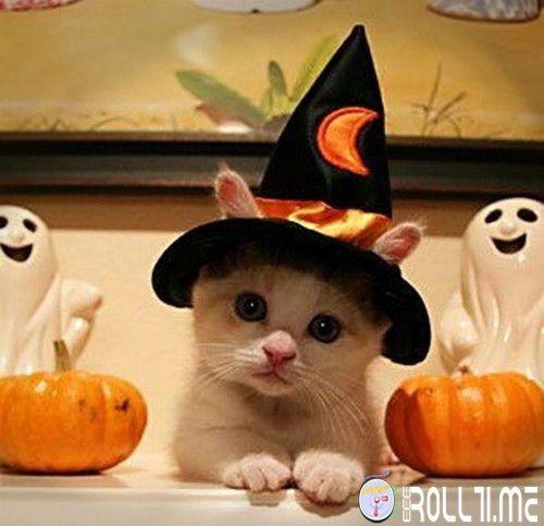 #HalloweenRoll