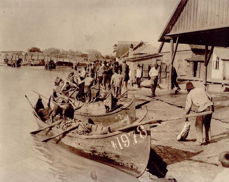 Pescari in Delta Dunarii (Născut în România: E mare fericire să ai un crez!)
