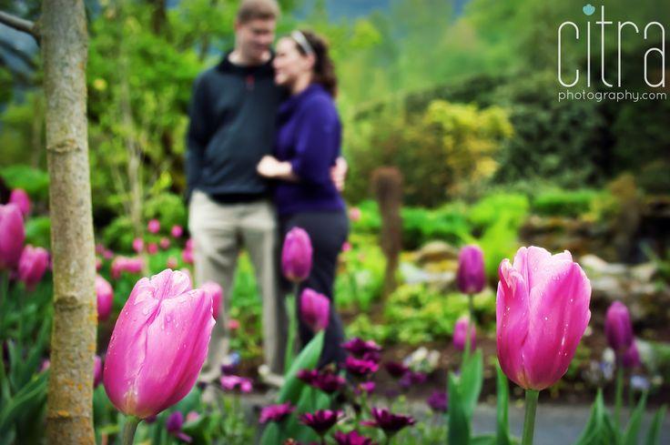 Engagement Photography, Chilliwack BC, Love, Couple, Engagement Pose, Tulips