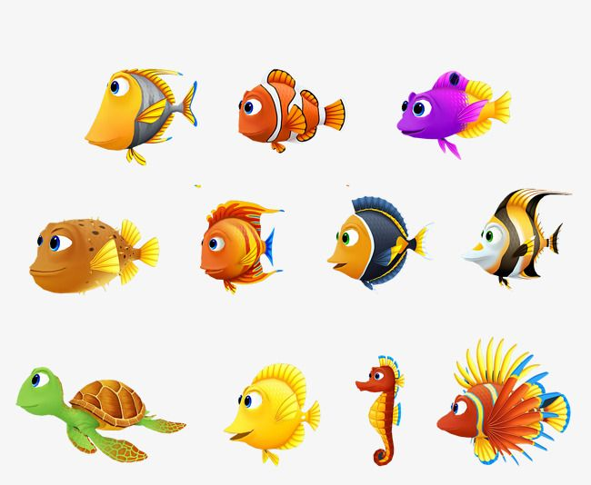 Millions Of Png Images Backgrounds And Vectors For Free Download Pngtree Fish Vector Graphic Design Background Templates Cartoon Fish