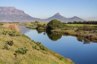 FREE access to Table Bay Nature Reserve on 18 and 19 March