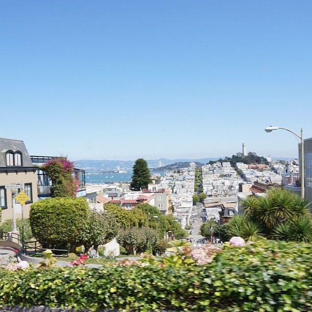 Beautiful day in San Fran, view of the city from Lombard street ☀ #view #city #lombardstreet #sanfrancisco #summer