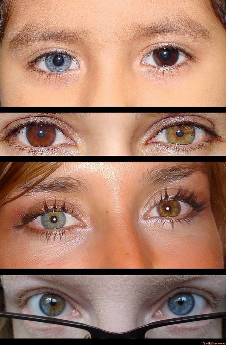 Brown Eye Makeup Tutorial: 159 Best Heterochromia Eyes Images On Pinterest
