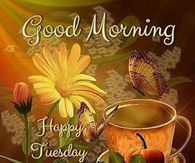 Good Morning, Happy Tuesday, God Bless You