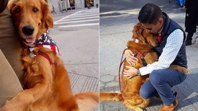 Картинки по запросу пес обнял хозяина