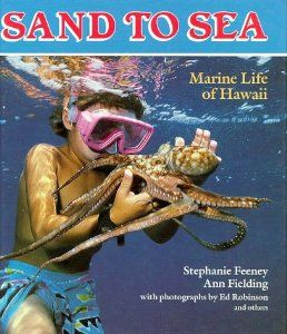 Sand To Sea Marine Life Of Hawaii A Kolowalu Book