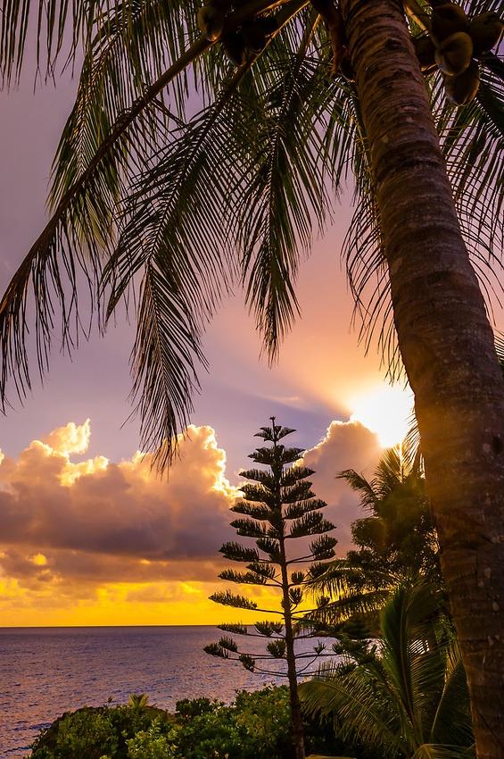 ✯ Tadine Bay, Island of Mare, Loyalty Islands, New Caledonia