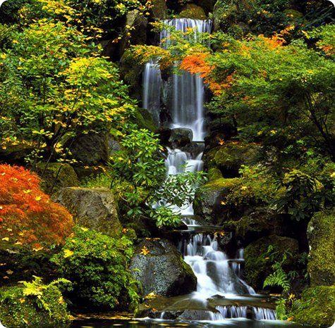 Waterfall In Japanese Garden Portland, Oregon