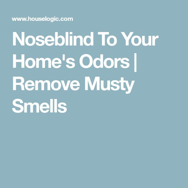 Noseblind To Your Home's Odors | Remove Musty Smells