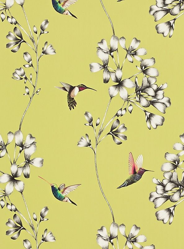 Harlequin Amazilia Wallpaper, Gooseberry.