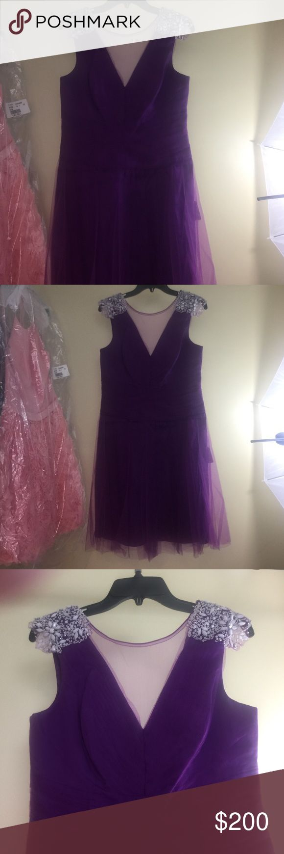Brand new Beautiful  Kathy Hilton Dress!  👗👗 New authentic Kathy Hilton Short purple dress. Kathy Hilton Dresses