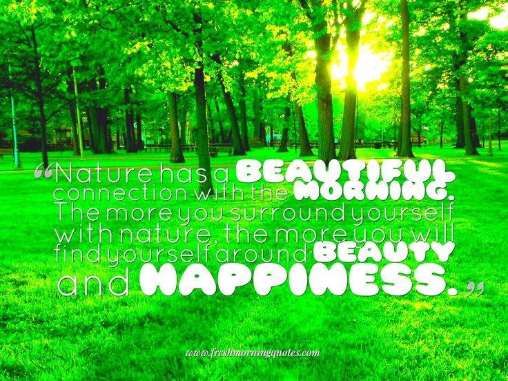 15+ Beautiful Good Morning Images with Quotes