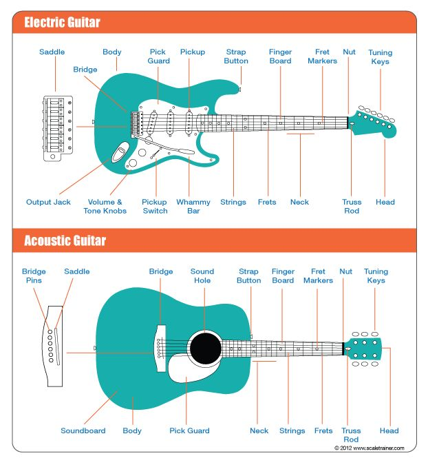 Guitar Parts Crossword : a breakdown of the parts of a guitar guitar lessons pinterest guitar and the o 39 jays ~ Vivirlamusica.com Haus und Dekorationen