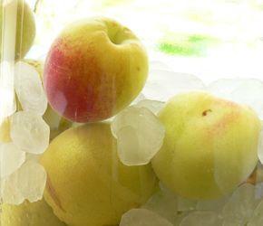 冷凍梅で作る梅シロップ レシピ