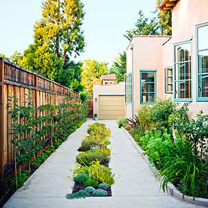 After the solid driveway of this Palo Alto property was replaced with twin ribbons of concrete, landscape architect Jeni Webber planted the new median strip with low-growing echeverias, dwarf daffodils, sedums, and creeping thyme that cars can still drive over (a garage lies at the rear).
