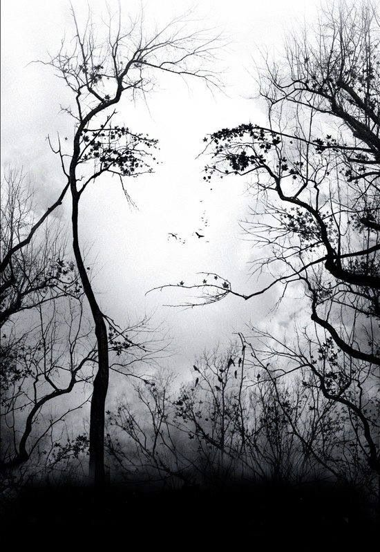 Im inspired by how the artist incorprated the face with the trees