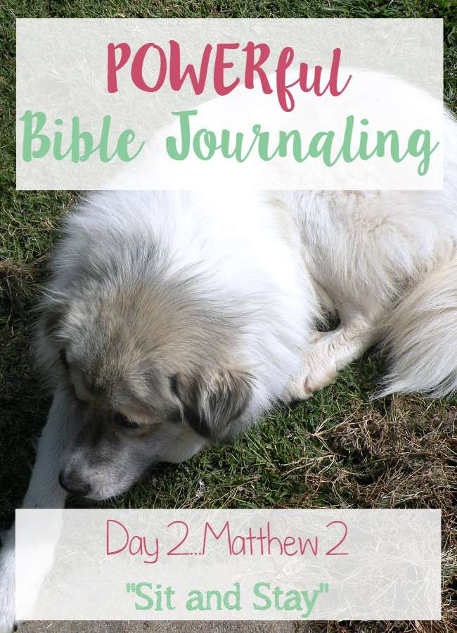 In our POWERful Bible Journaling of Matthew 2 I share how the Kingdom of God many times looks like an ordinary, everyday life here on Earth. #biblejournaling #biblestudy